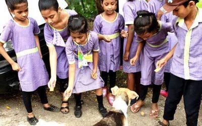 Ashari (Animal Shelter Visit)